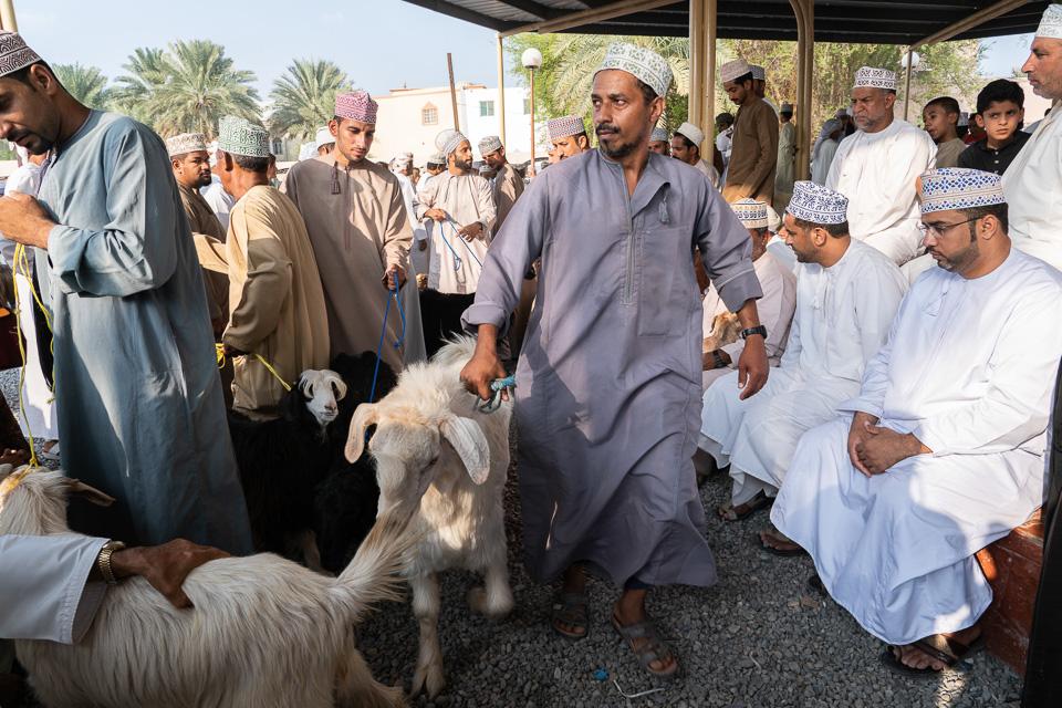 The goat market in Nizwa, Oman.