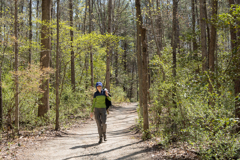 Hiking a trail at the Latta Plantation Nature Preserve